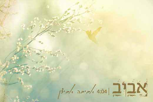 אביבה אבידן – אביב