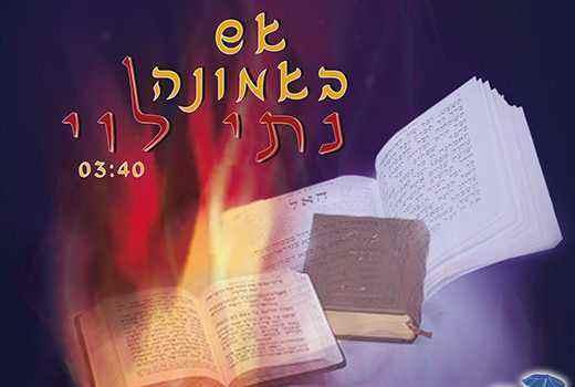 נתי לוי – אש באמונה