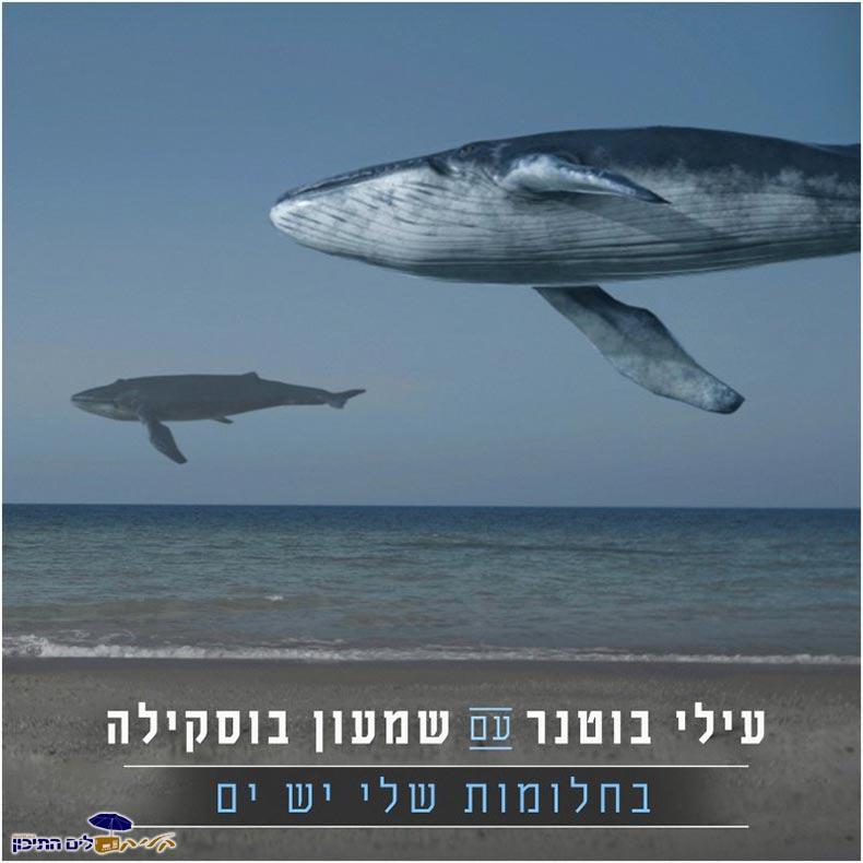 שמעון בוסקילה ועילי בוטנר - בחלומות שלי יש ים